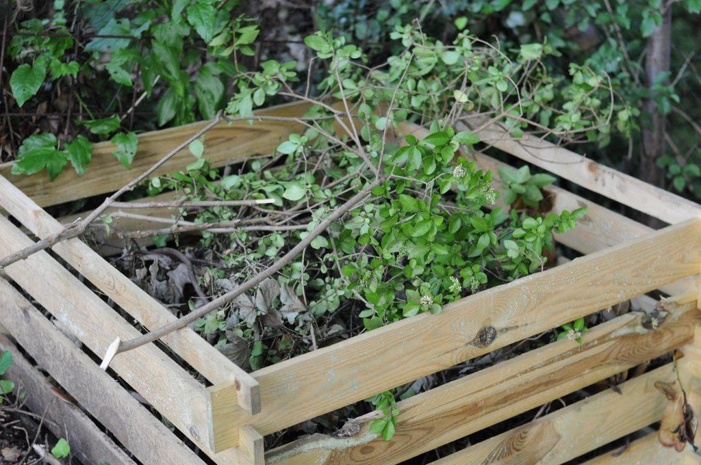 Garden waste in a wooden composter